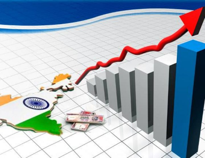 Indian economy no longer dependent on the oxygen of govt support