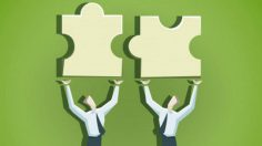 Mutual fund scheme consolidation: Finding middle path may benefit investors